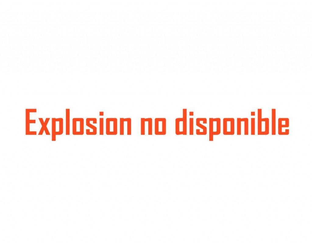 Explosion Generador Inverter Madeira